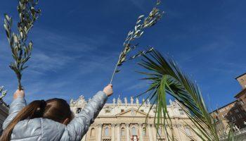 """LA Domenica delle Palme e il coraggio di Papa Francesco.""""Acqua alle funi"""" della misericordia."""